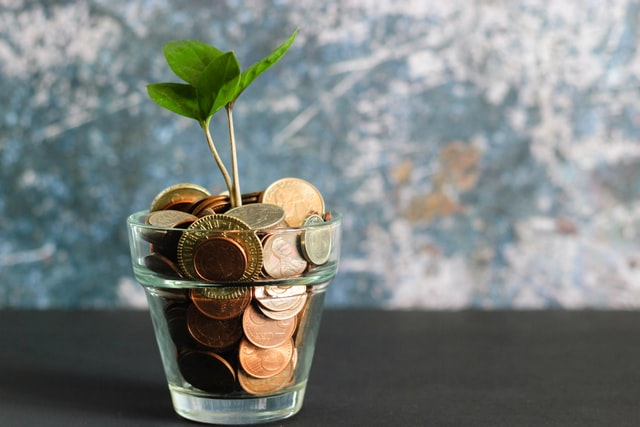 A plant growing out of a glass vase filled with coins.
